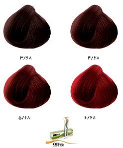 رنگ موی الیو گروه شرابی