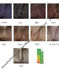 رنگ موی گارنیک سری خاکستری ASH