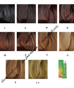رنگ موی گارنیک سری طبیعی